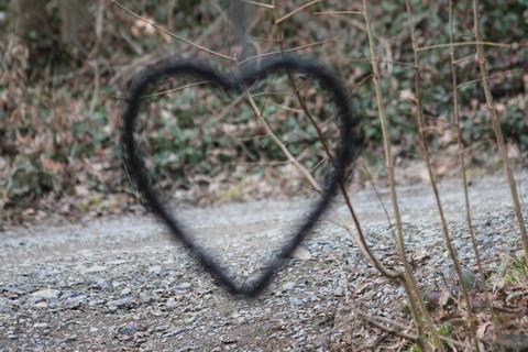 Uit liefde voor..